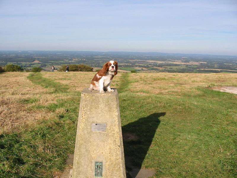 Henry on top of Ditchling Beacon
