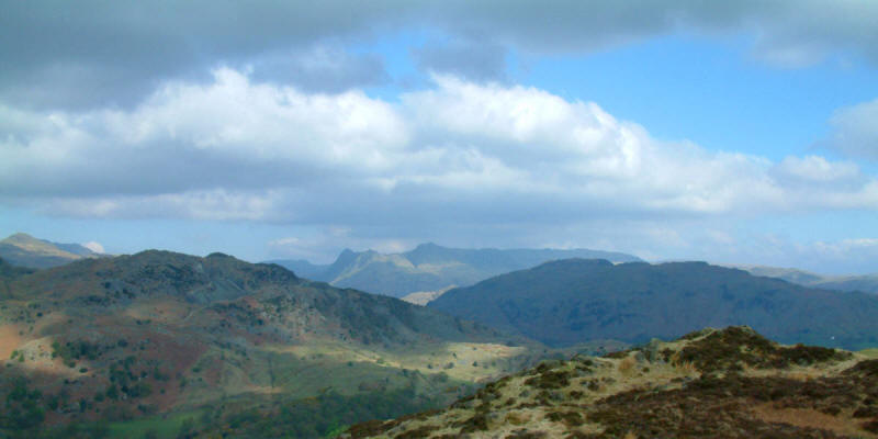 Langdale Pikes and Lingmoor Fell from Holme Fell