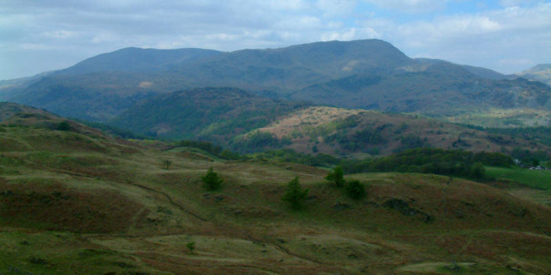 Coniston Fells from Black Fell
