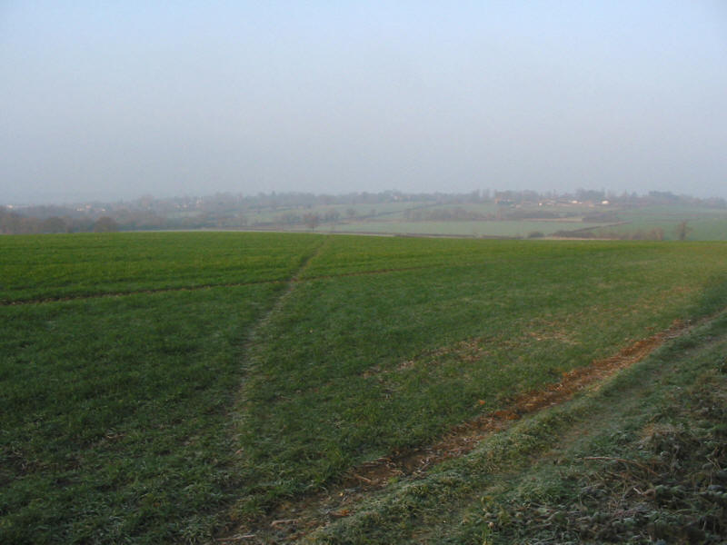 Fields between Chigwell and Chigwell Row