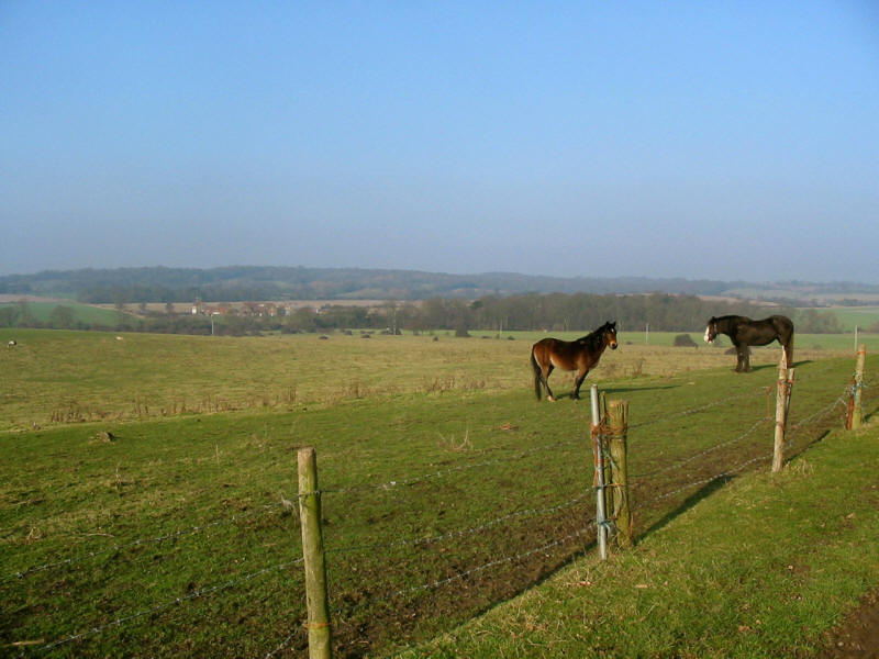 View to Park Farm from edge of Havering Country Park