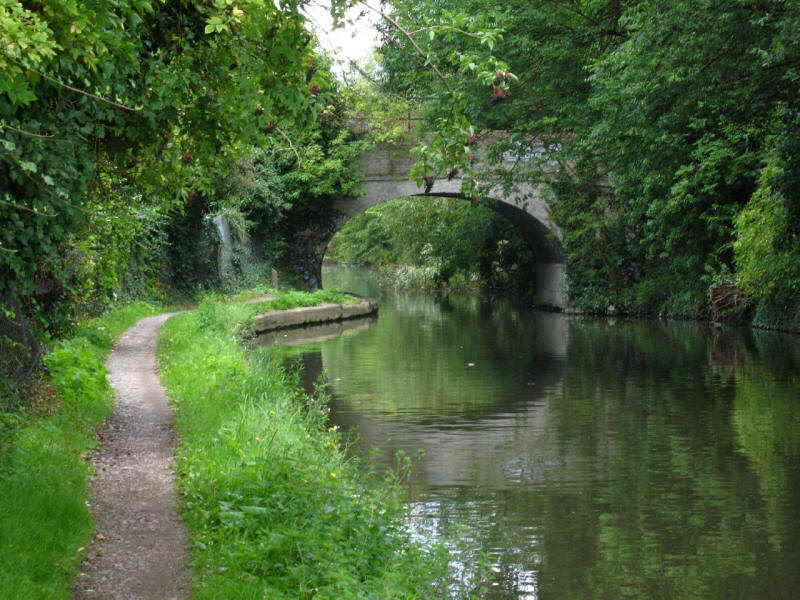Bridge 196, Grand Union Canal