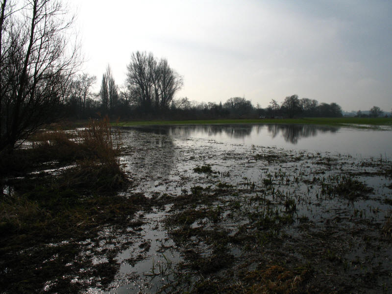 Flooded towpath above Shiplake