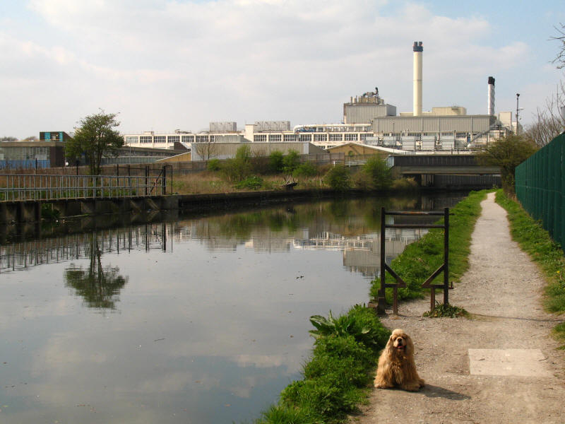 Nestl� factory, Grand Union Canal, Hayes
