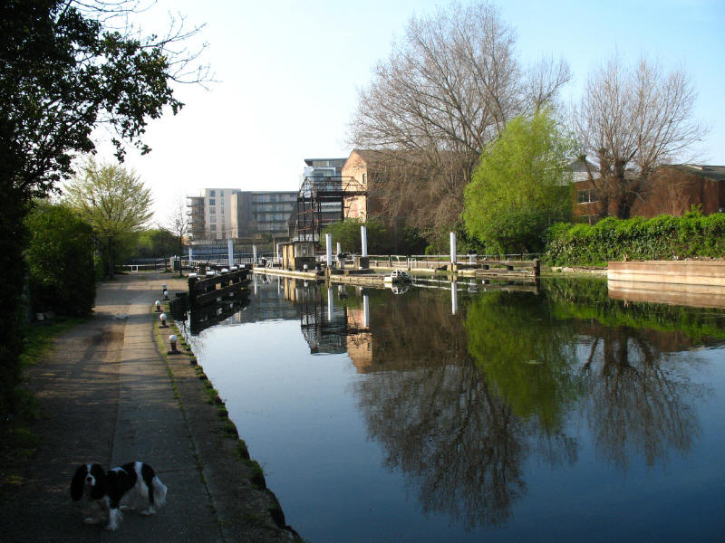 Old Ford Locks, River Lee Navigation