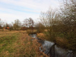River Little Ouse near Gasthorpe