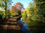 Autumn colours on the New River in Enfield