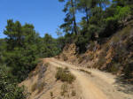 Dirt road in Troodos mountains, Cyprus