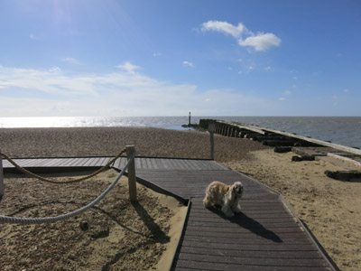 Landguard Point, Felixstowe