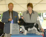 Winston (Best of Winners) with the judge and Diane, the owner-handler.
